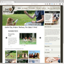 Screenshot of the DogMomma Website