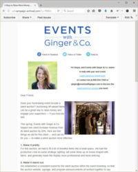 Screenshot of the Events with Ginger & Co Email Newsletter